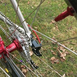 """Rear 30 mm wide 29"""" (ISO 622mm) wheel"""